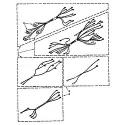 RF390PXP Electric Range Wiring harness Parts diagram